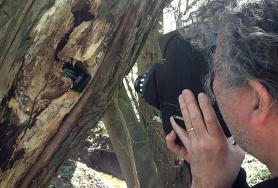 Hermann Feldhaus filming on fieldsite with his 16 mm camera.